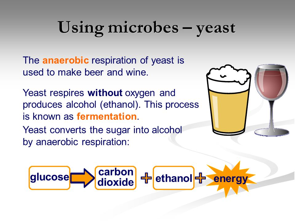 Using microbes – yeast energy carbon glucose ethanol dioxide