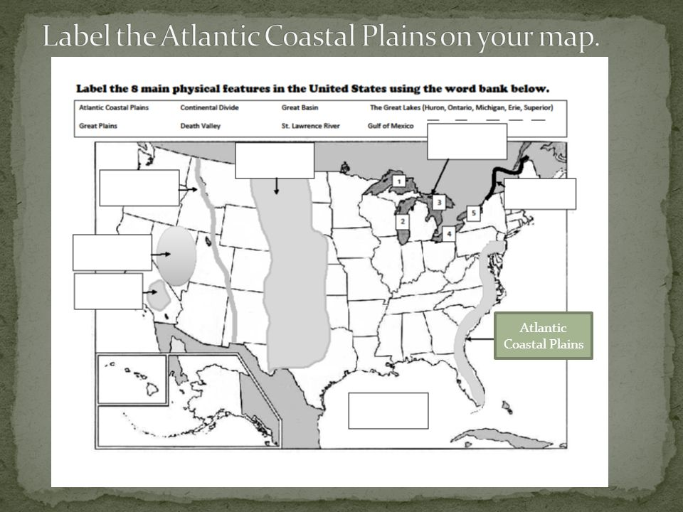 Label the Atlantic Coastal Plains on your map.