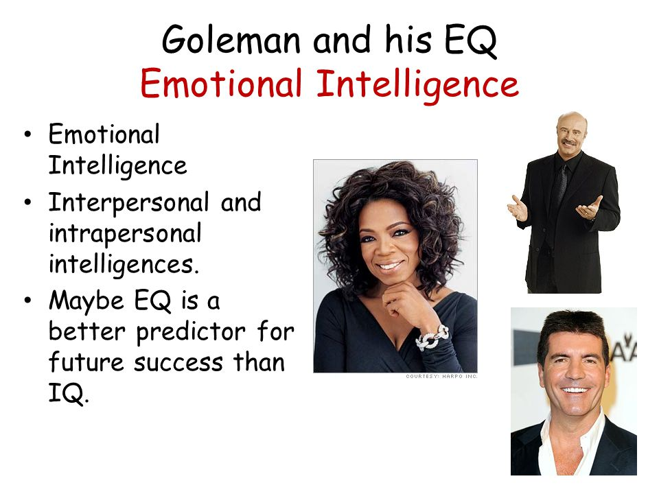 eq is better than iq A reason why a person with a high eq tends to execute better decision making is  a high iq / low eq achieves  is more constructive in life than.