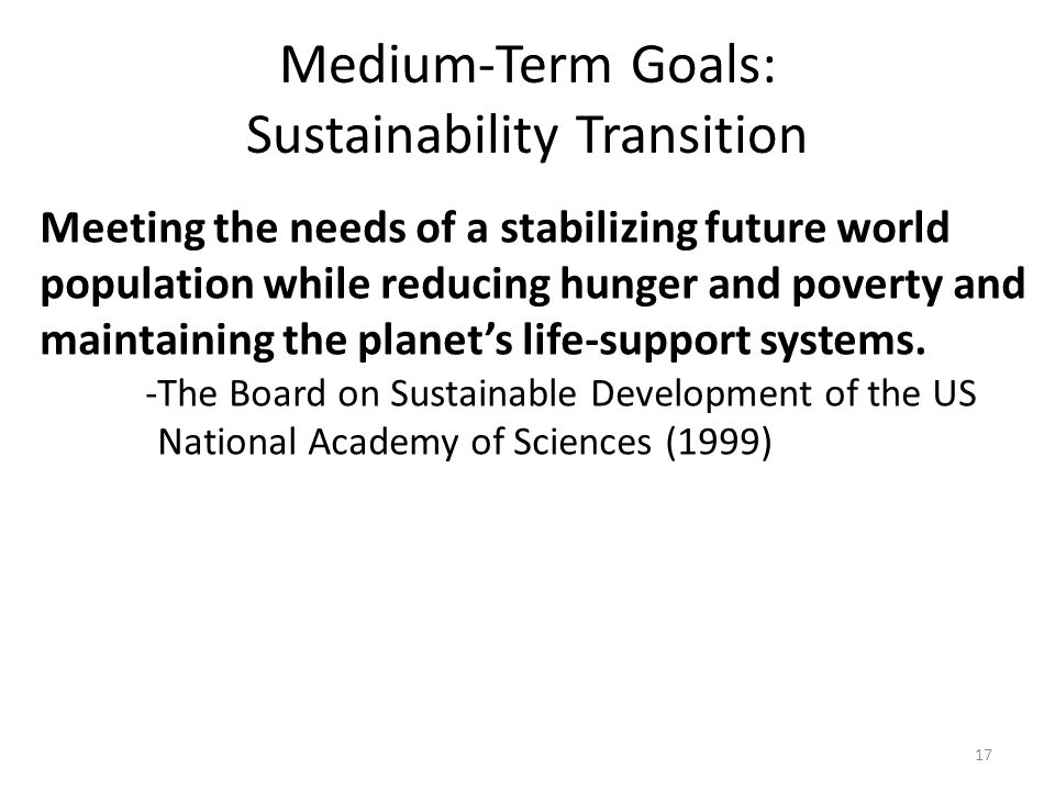 Medium-Term Goals: Sustainability Transition