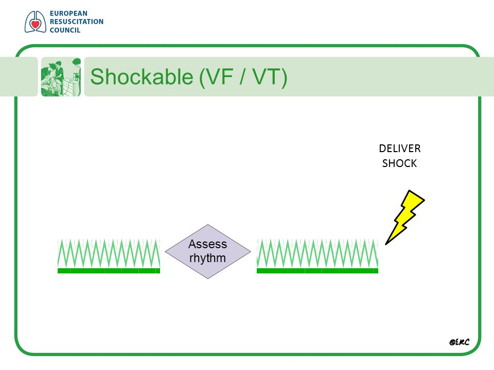 Shockable (VF / VT) DELIVER SHOCK Assess rhythm