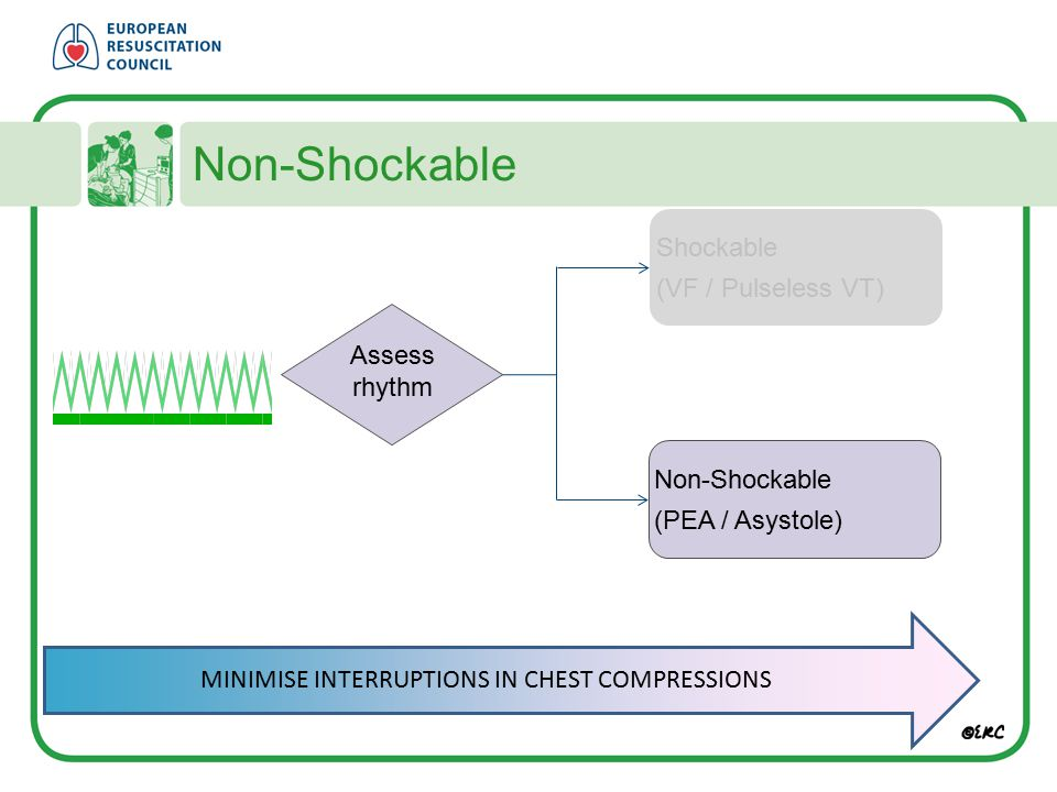 Non-Shockable Shockable (VF / Pulseless VT) Assess rhythm