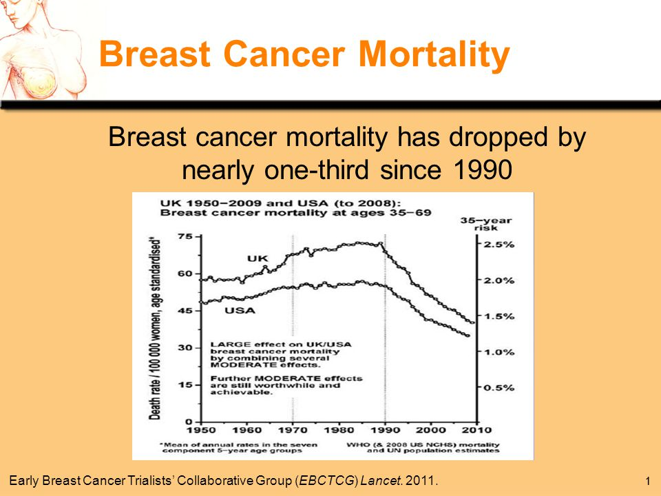 breast cancer mortality chicago jpg 1500x1000
