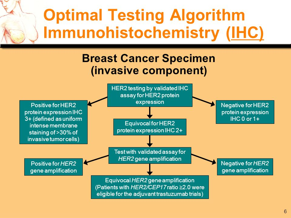 Breast cancer mortality ppt download for Fish test for cancer