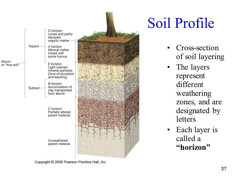 Weathering and rock breakdown ppt video online download for Soil profile video