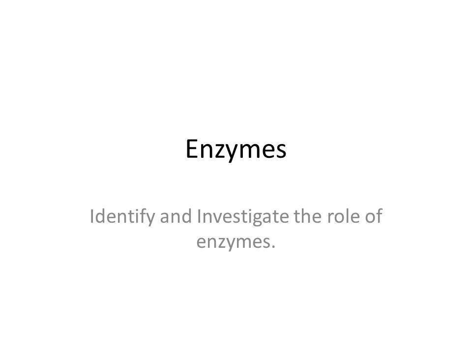 Identify and Investigate the role of enzymes.