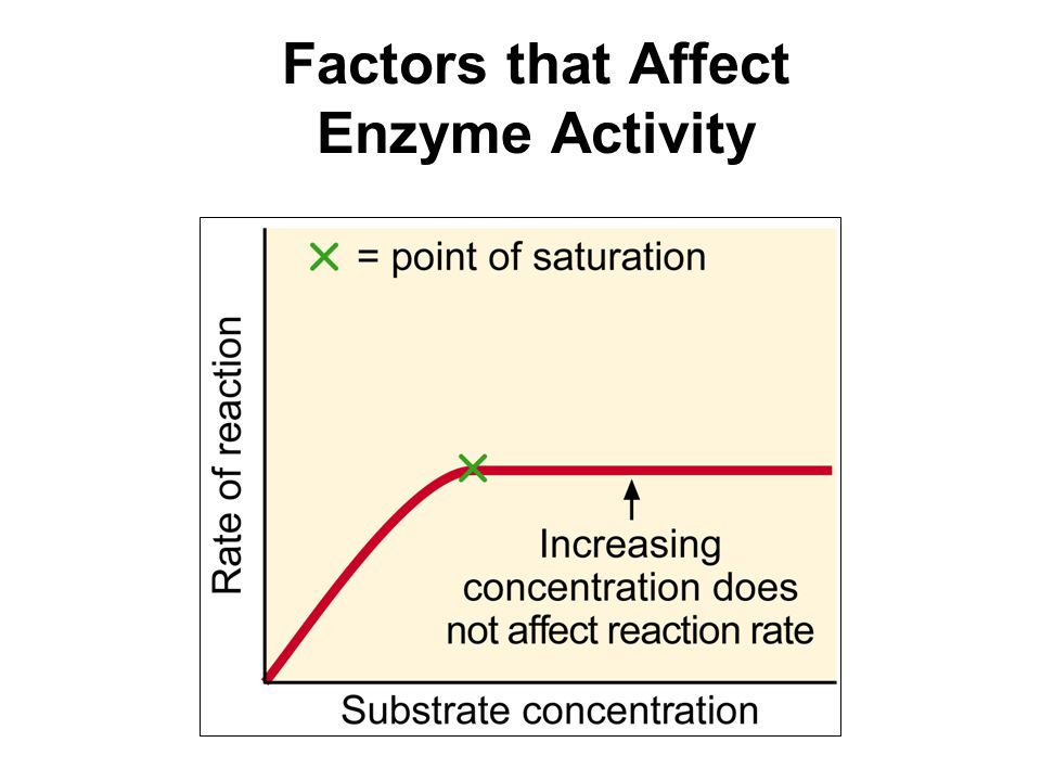 factors effecting enzymes Ap biology factors influencing enzyme activity lab by: chase, brian, walter, and nick the general questions: 1 balanced equation: 2 h2o2--2 h2o + o2 2.