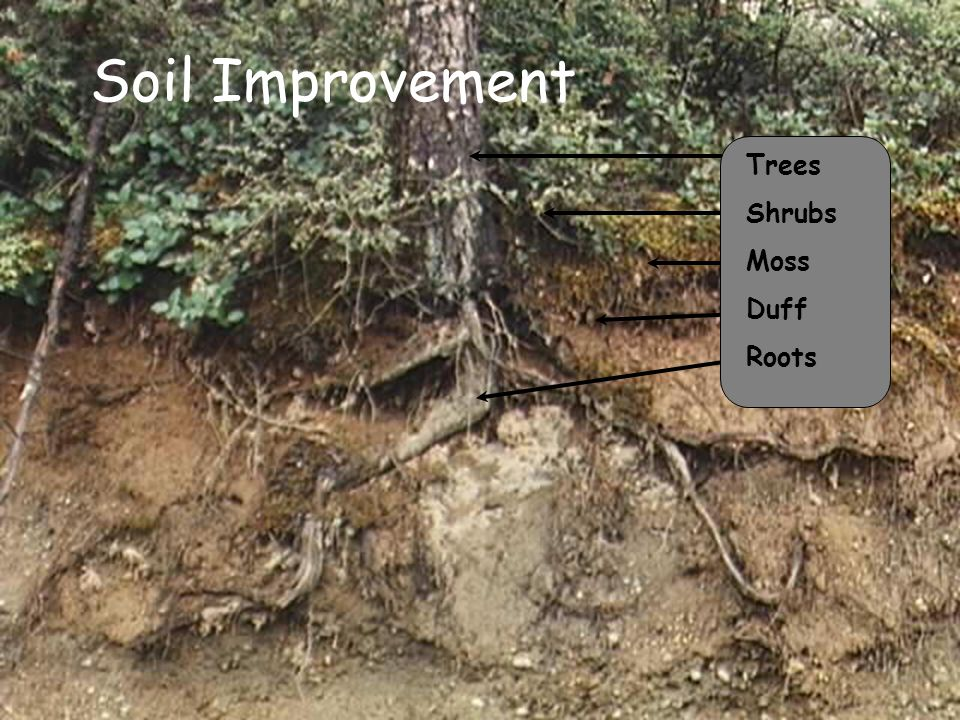 Factors that influence erosion ppt download for Soil improvement