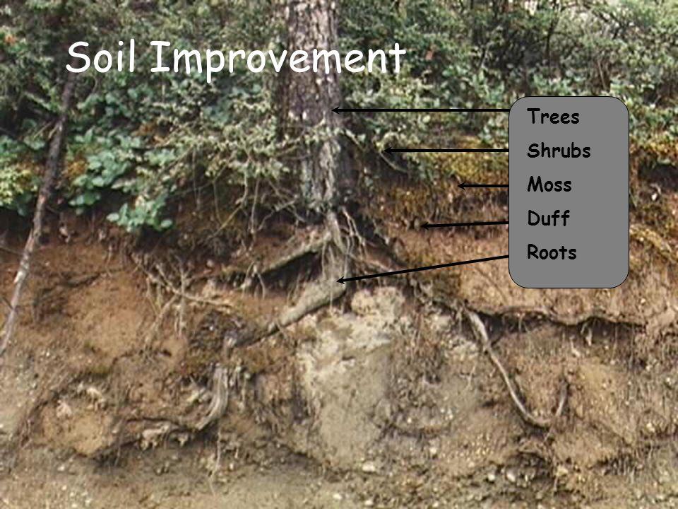 Factors that influence erosion ppt download for Soil improvement