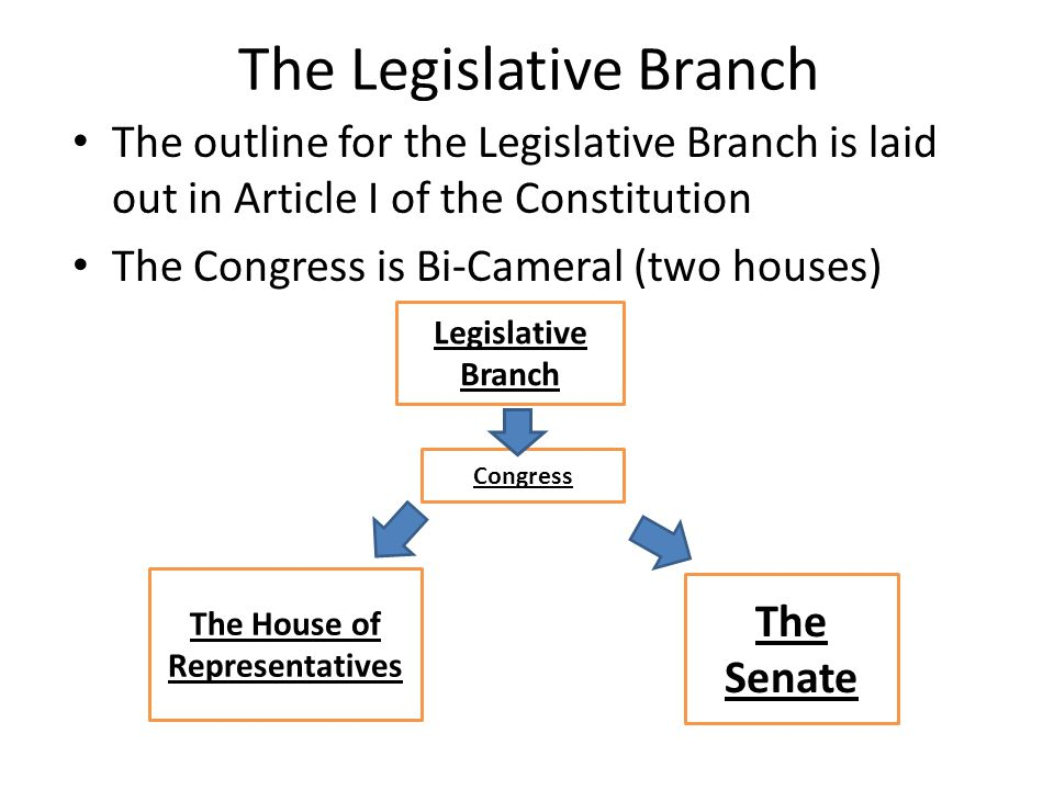 the respective roles of the legislature Functions of the legislative council include: legislating the council is often called a house of review because of its function of monitoring and reviewing legislation and scrutinising the government's budget and the administration of government departments and other public agencies.