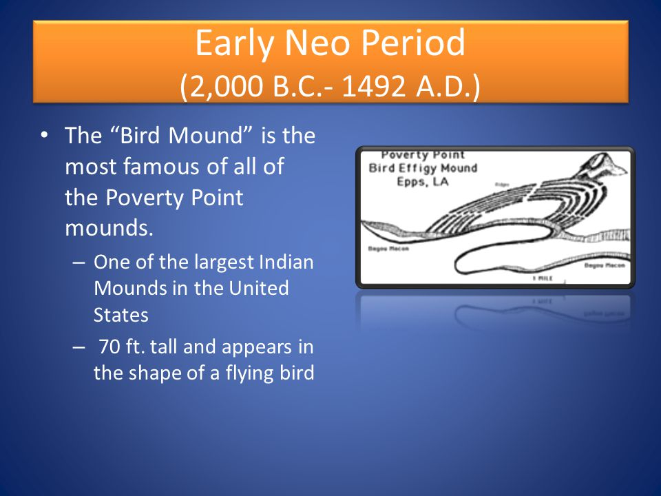 Early Neo Period (2,000 B.C A.D.)