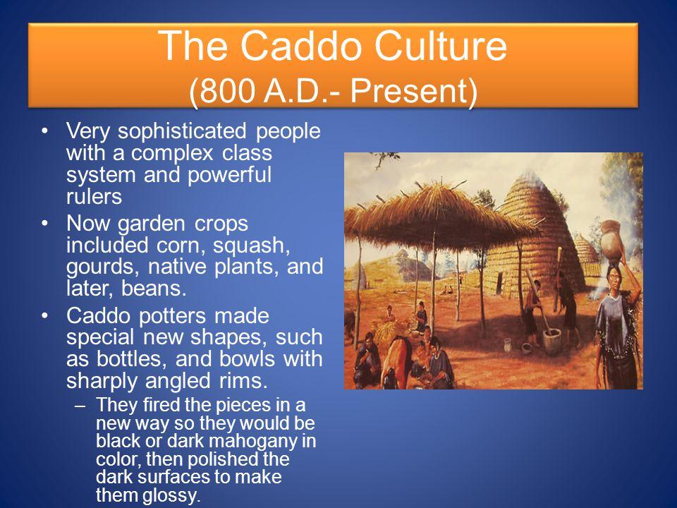 The Caddo Culture (800 A.D.- Present)