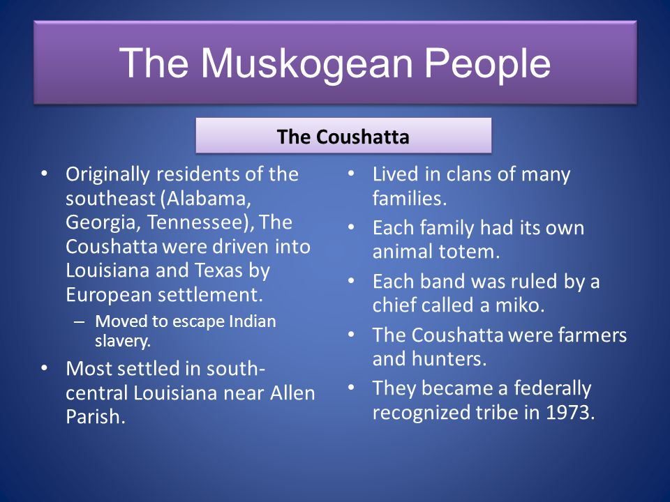The Muskogean People The Coushatta