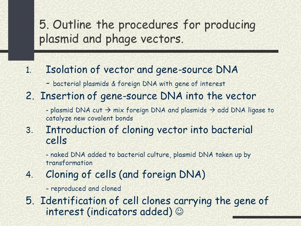 DNA & RNA Oligonucleotides - Quality You Can Trust