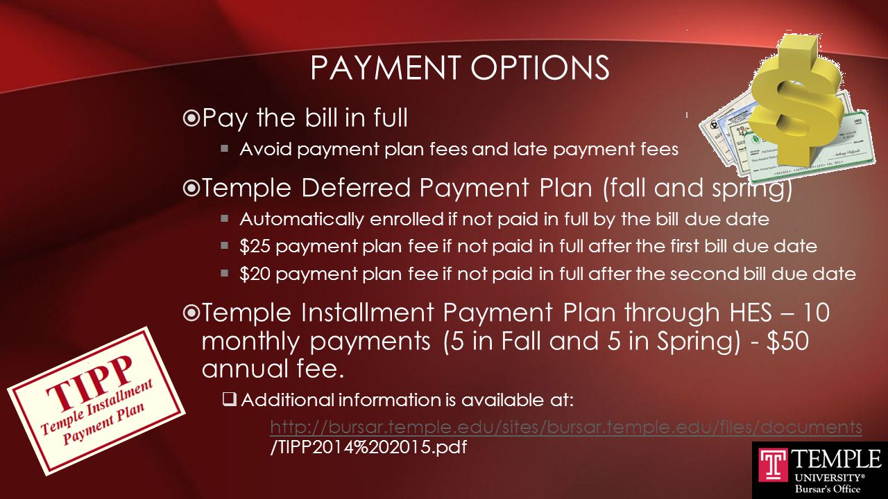 Payment Options Pay the bill in full