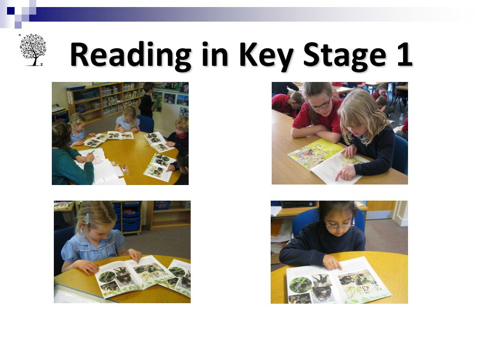 Reading in Key Stage 1