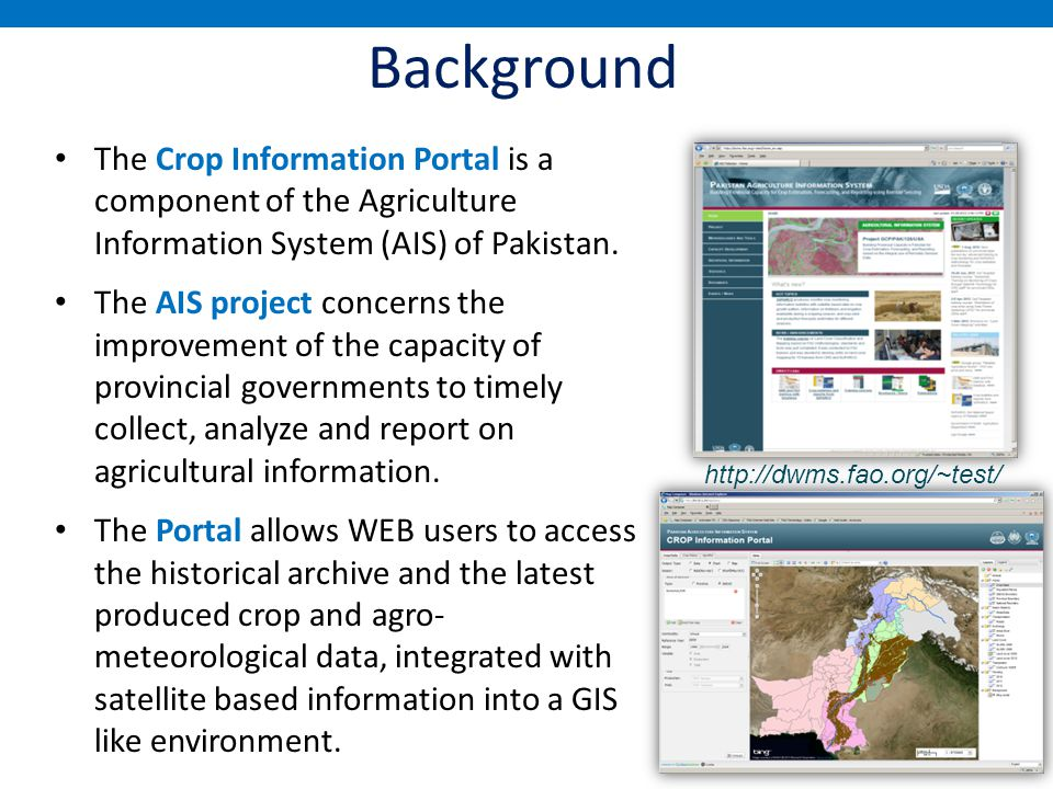 history of information system pdf