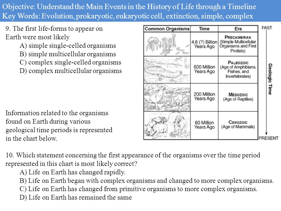 the history of eukaryotas Recent studies with new molecular data and techniques are revealing this history [2] recent competing hypotheses about the origin of eukarya the tree of life currently presented in most textbooks refers to three domains of life [3, 4.