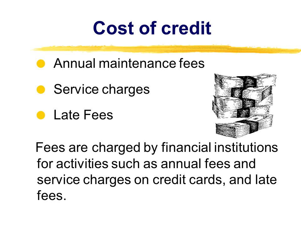 Cost of credit  Annual maintenance fees  Service charges  Late Fees