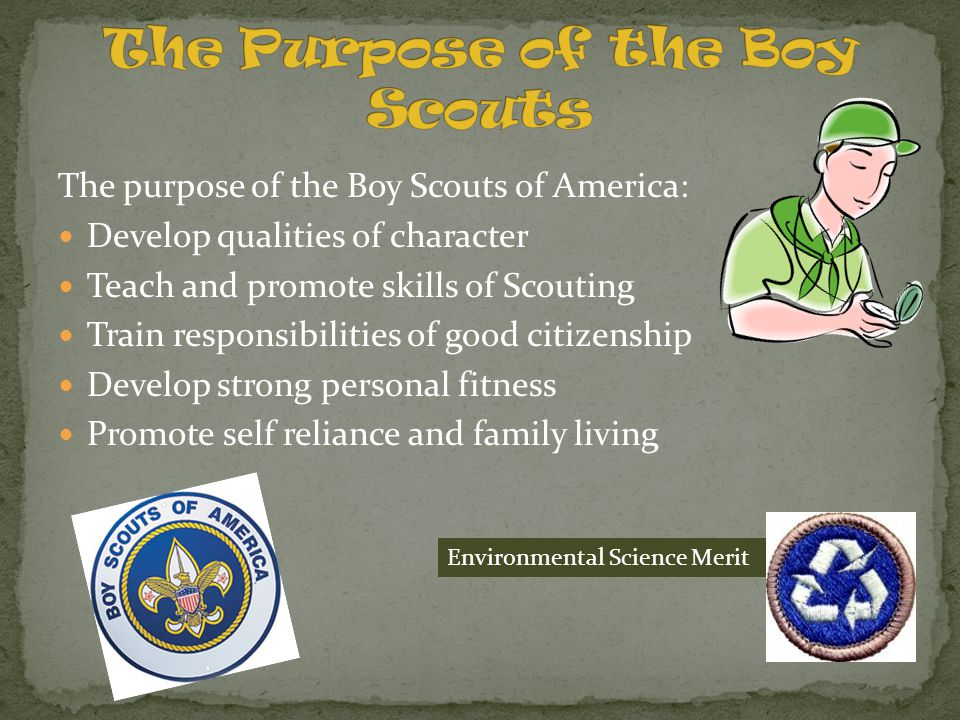 The Purpose of the Boy Scouts