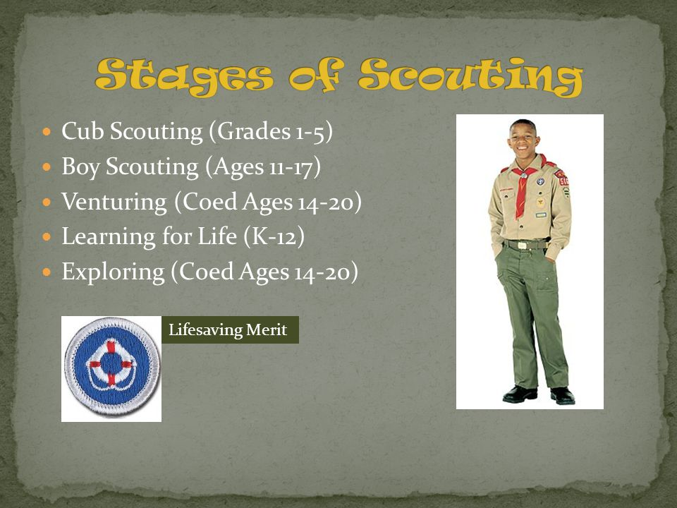 Stages of Scouting Cub Scouting (Grades 1-5) Boy Scouting (Ages 11-17)