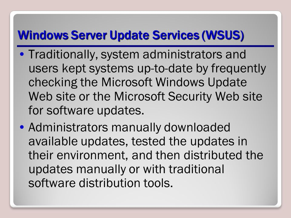 Windows Server Update Services (WSUS)