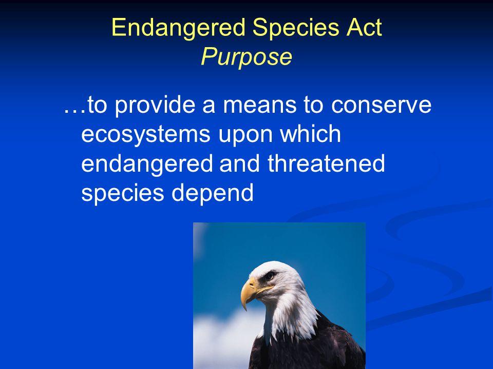 Endangered Species Act Ppt Video Online Download