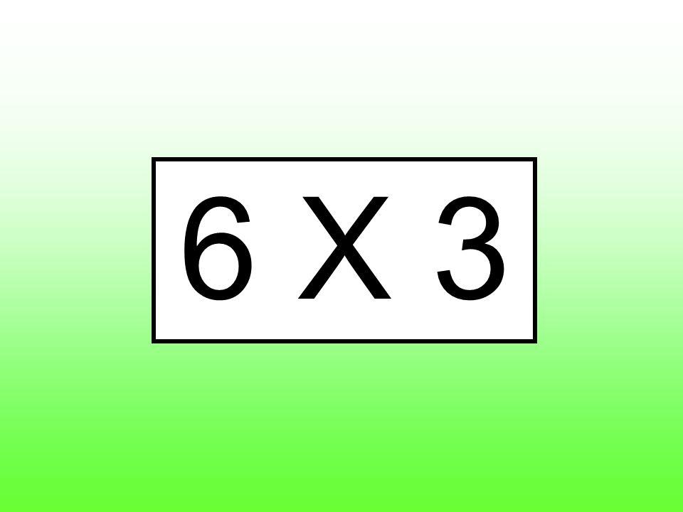 6 X 3