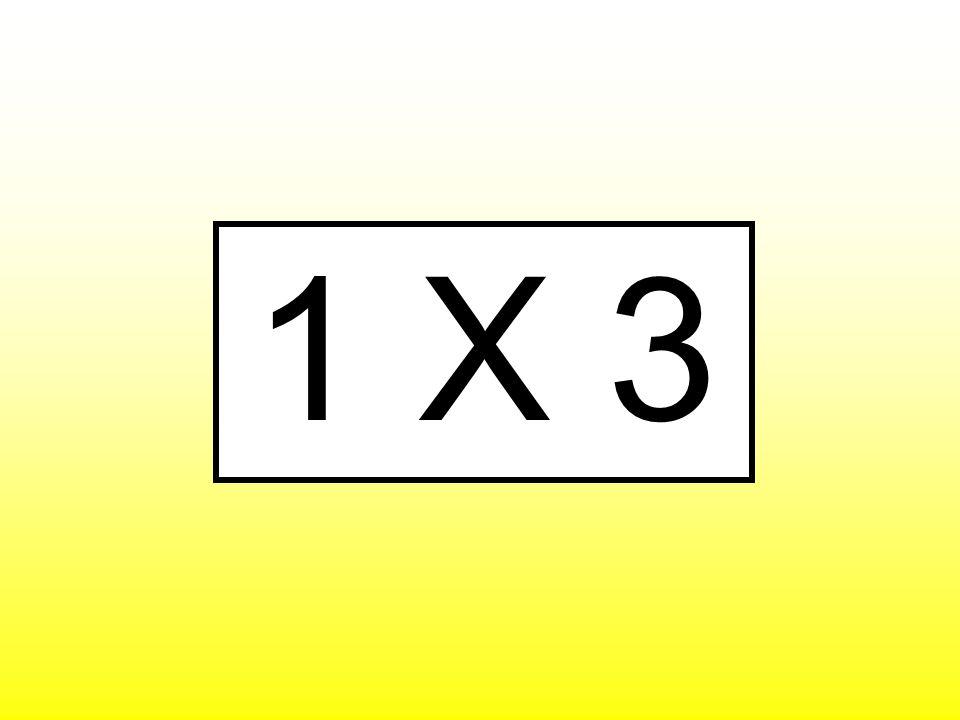 1 X 3