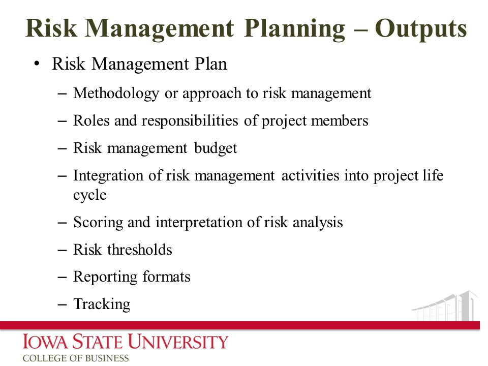 Risk Management Planning – Outputs