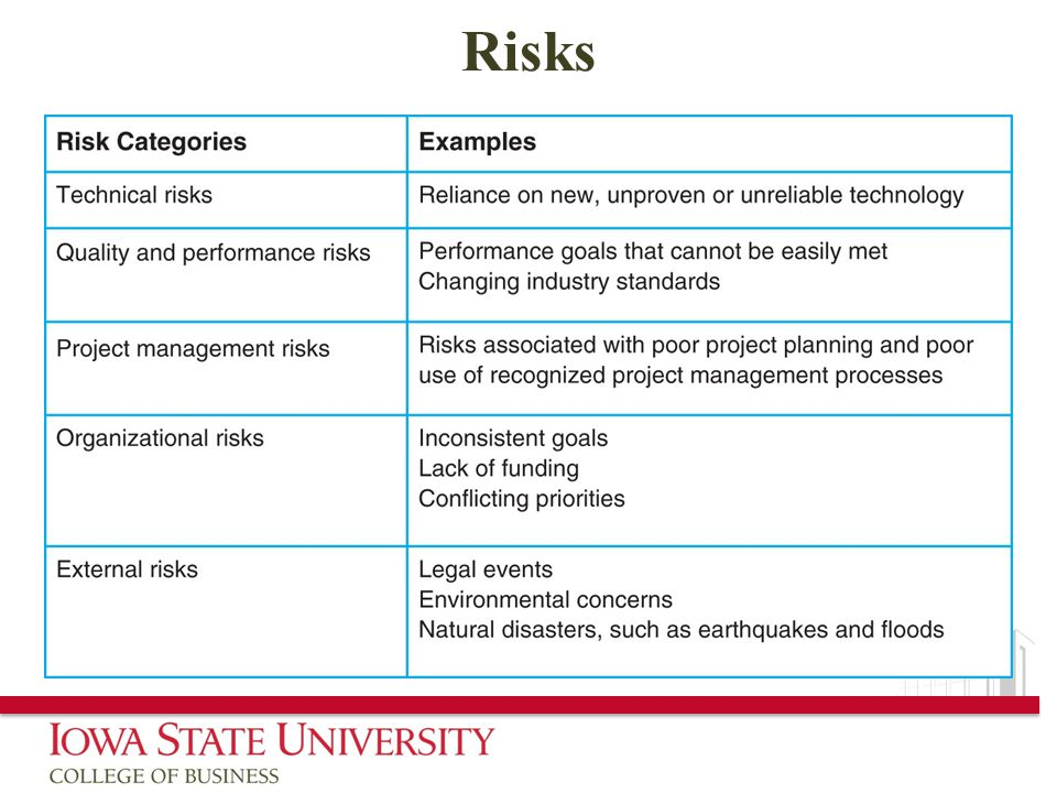 Managing Project Risk Ppt Download