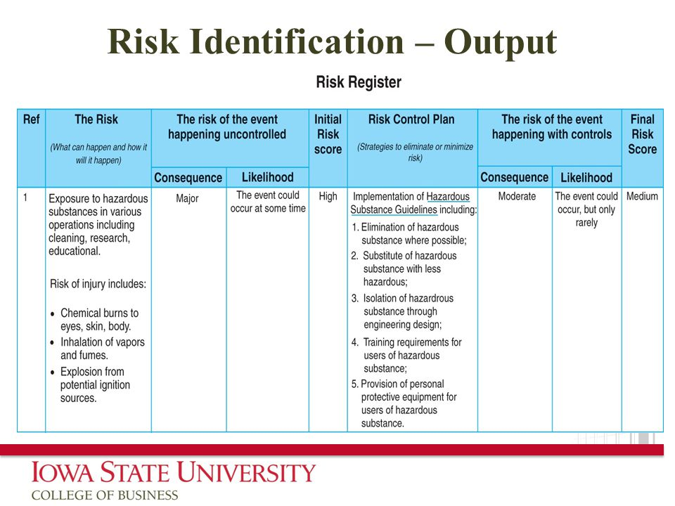 Risk Identification – Output
