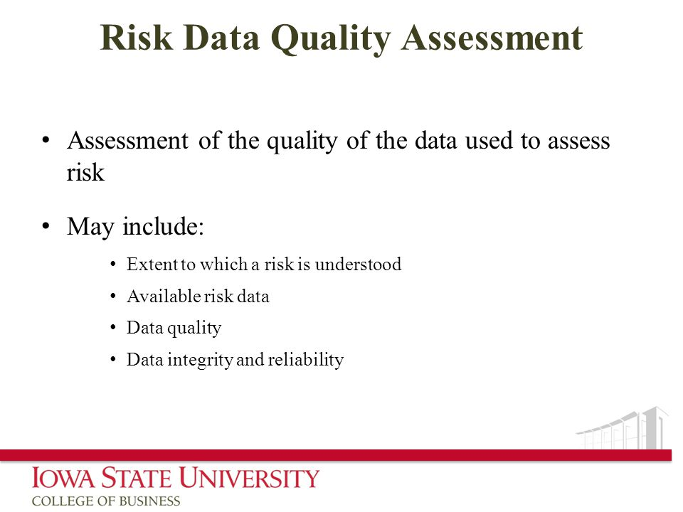 Risk Data Quality Assessment