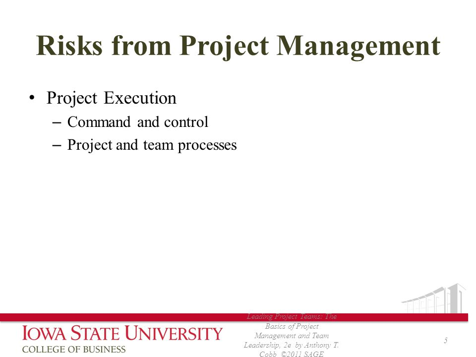 Risks from Project Management