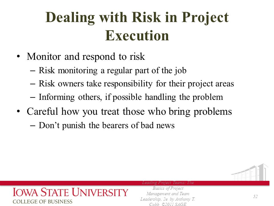 Dealing with Risk in Project Execution