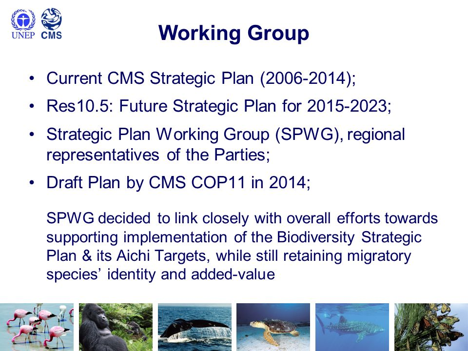 Working Group Current CMS Strategic Plan ( );