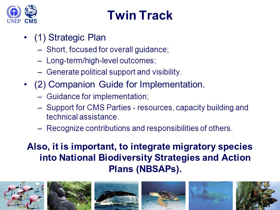 Twin Track (1) Strategic Plan (2) Companion Guide for Implementation.