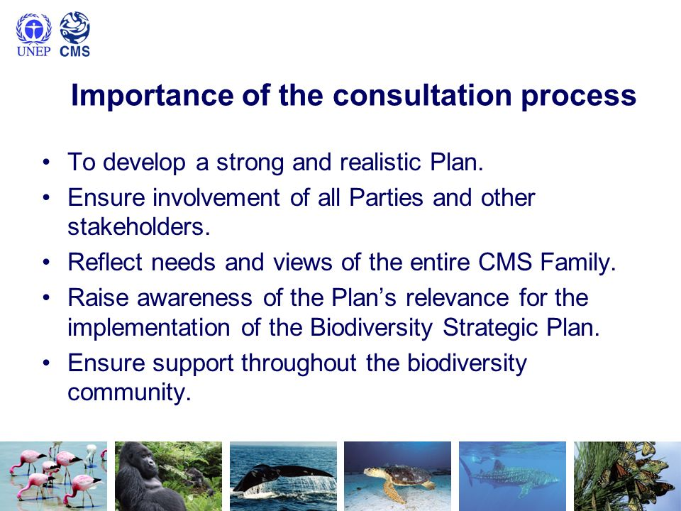 Importance of the consultation process