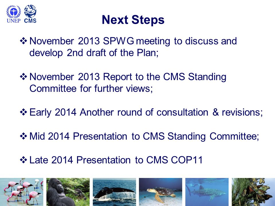 Next Steps November 2013 SPWG meeting to discuss and develop 2nd draft of the Plan;