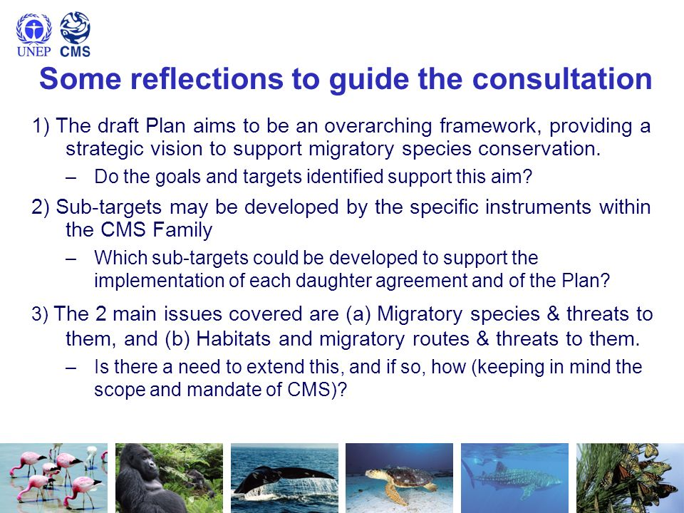 Some reflections to guide the consultation