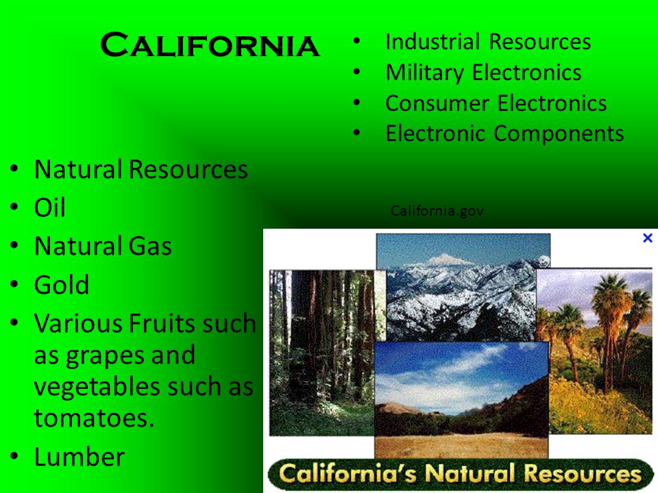 San Francisco Bay Natural Resources