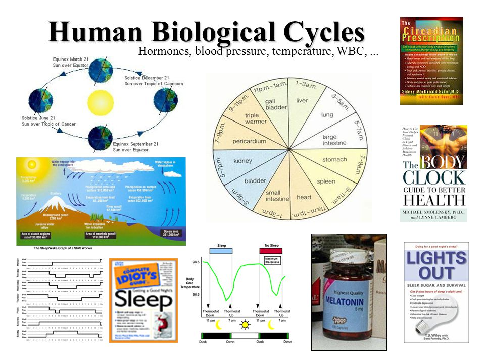 biological cycles 2018-8-2 biogeochemical cycle, any of the natural pathways by which essential elements of living matter are circulated the term biogeochemical is a contraction that refers to the consideration of the biological, geological, and chemical aspects of each cycle hydrologic sciences: biogeochemical cycles in.