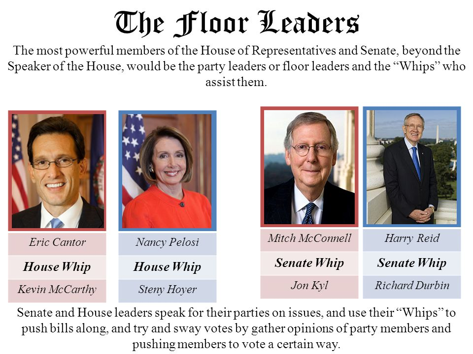 The us congress ppt video online download for Who are the floor leaders
