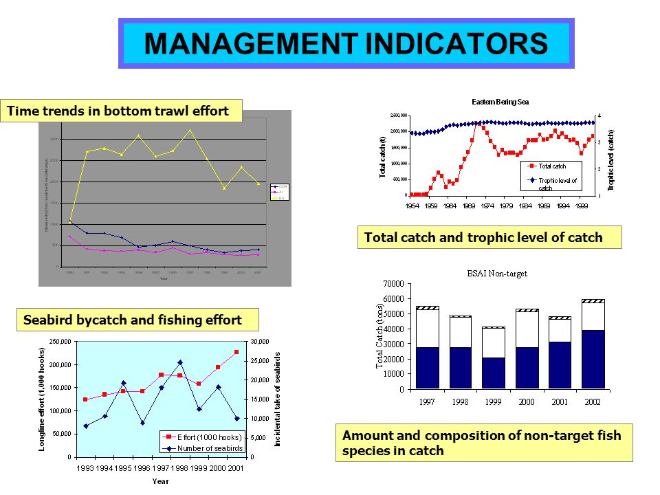 MANAGEMENT INDICATORS