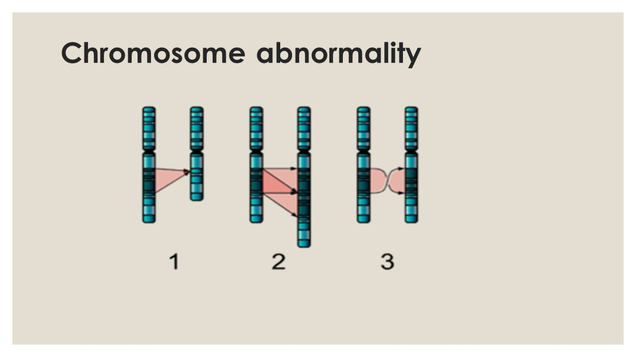 The three different types of chromosomal abnormalities