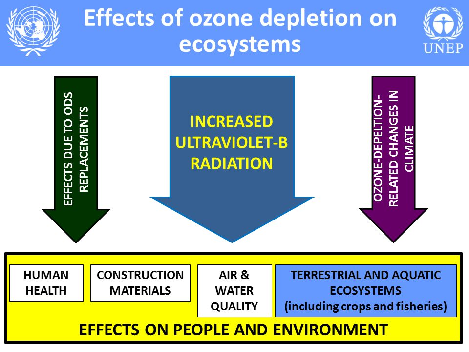 Impact of Cabin Ozone Concentrations on Passenger Reported Symptoms in Commercial Aircraft