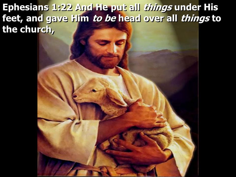 Ephesians 1:22 And He put all things under His feet, and gave Him to be head over all things to the church,