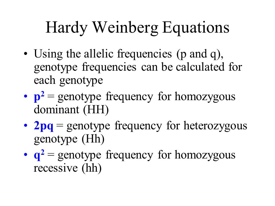 Hardy Weinberg Equations