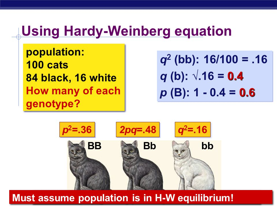 Using Hardy-Weinberg equation