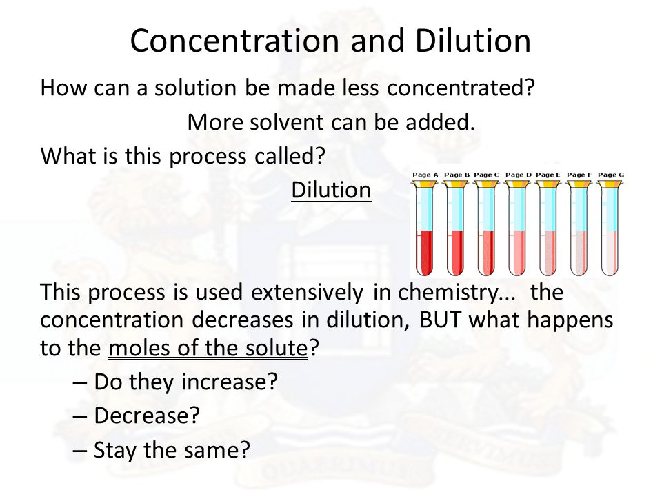 Explain stock options and how dilution occurs